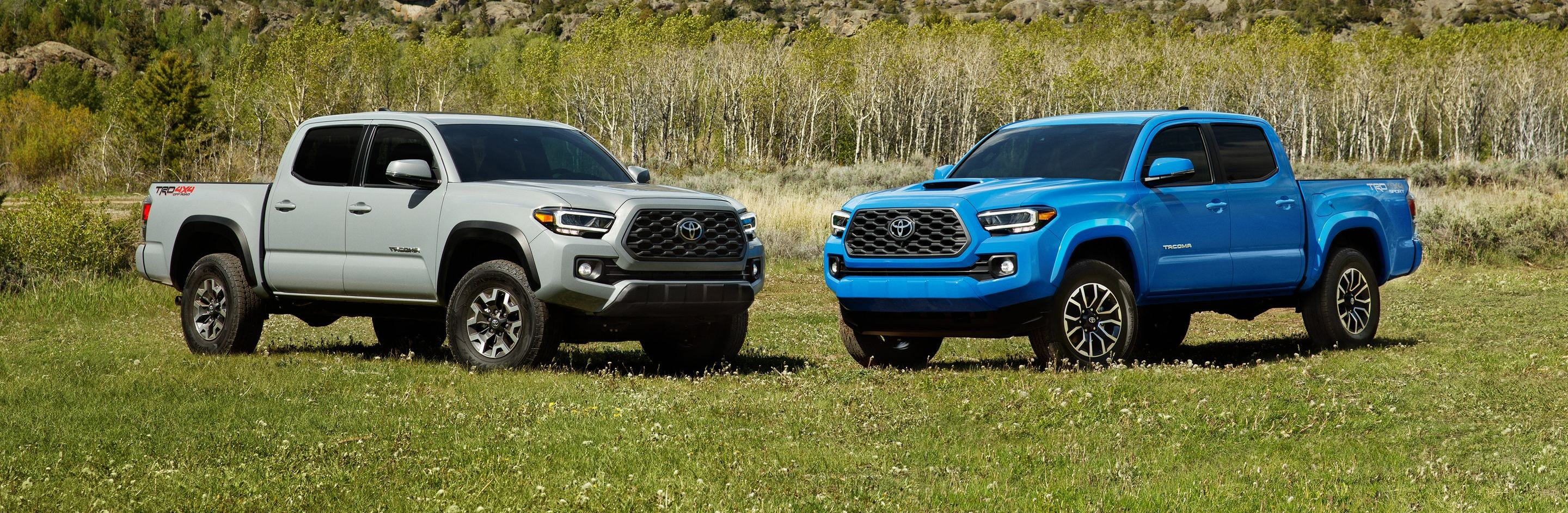 2020 Toyota Tacoma for Sale near Perrysburg, OH