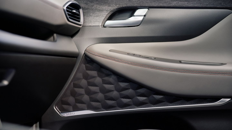 2020 Hyundai Santa Fe Interior Detailing