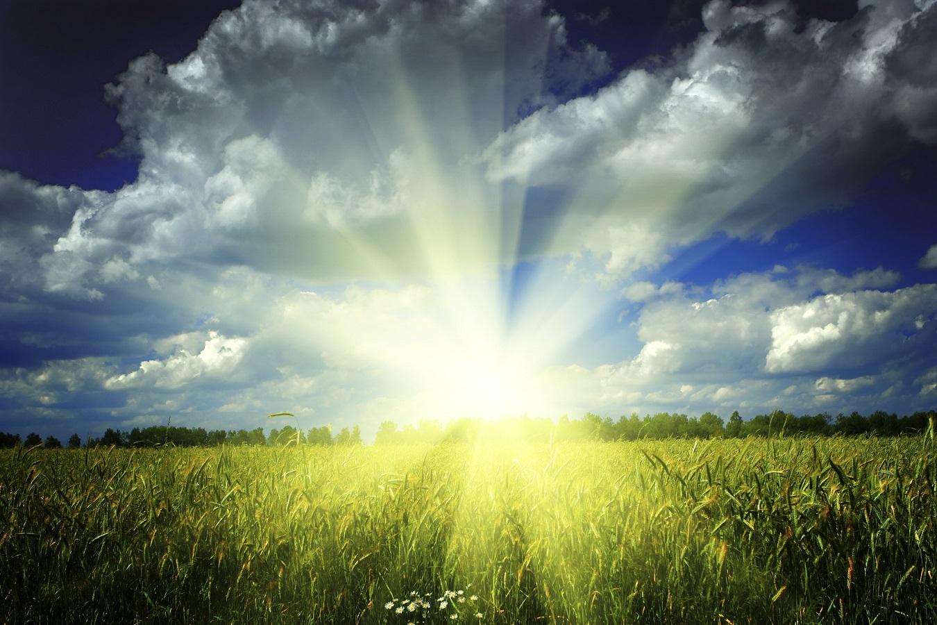 Breathe Fresh Air Today!