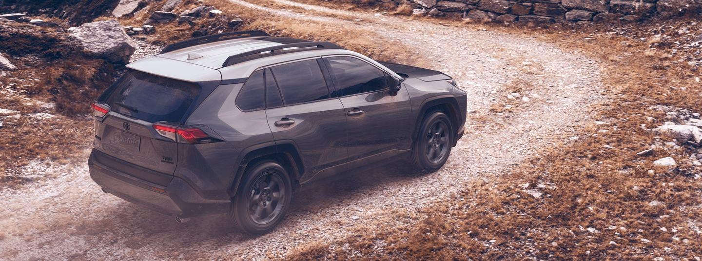 2020 Toyota RAV4 for Sale near Nicholasville, KY