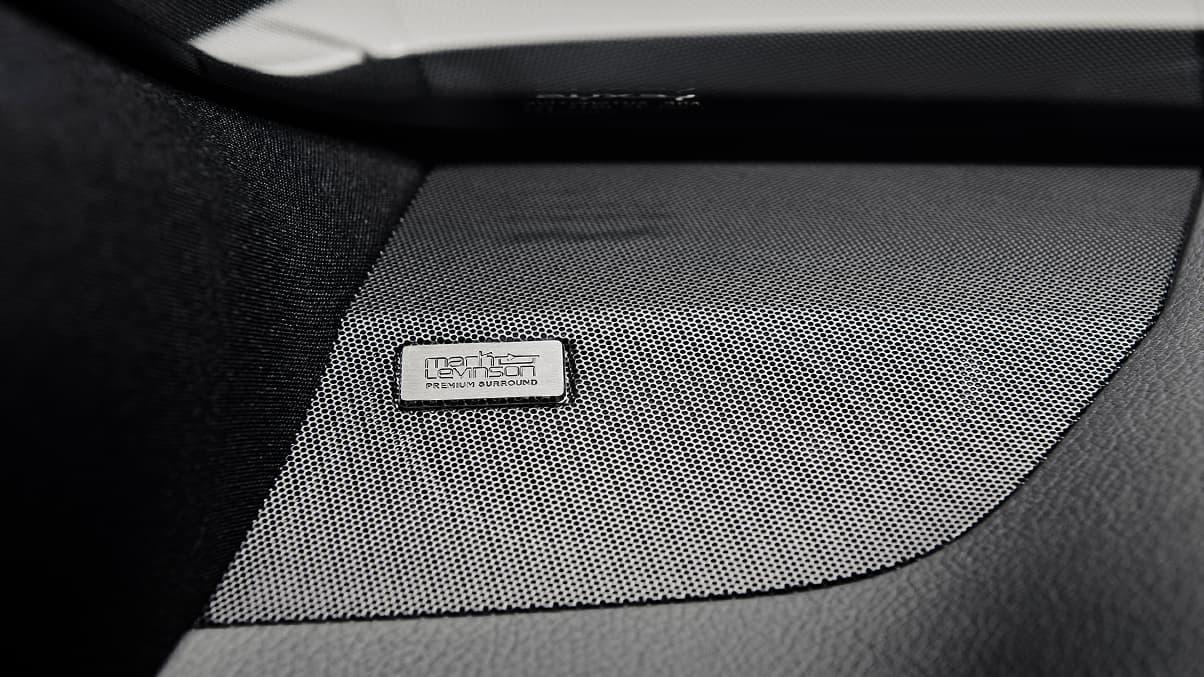 2020 NX 300 Mark Levinson® Sound System