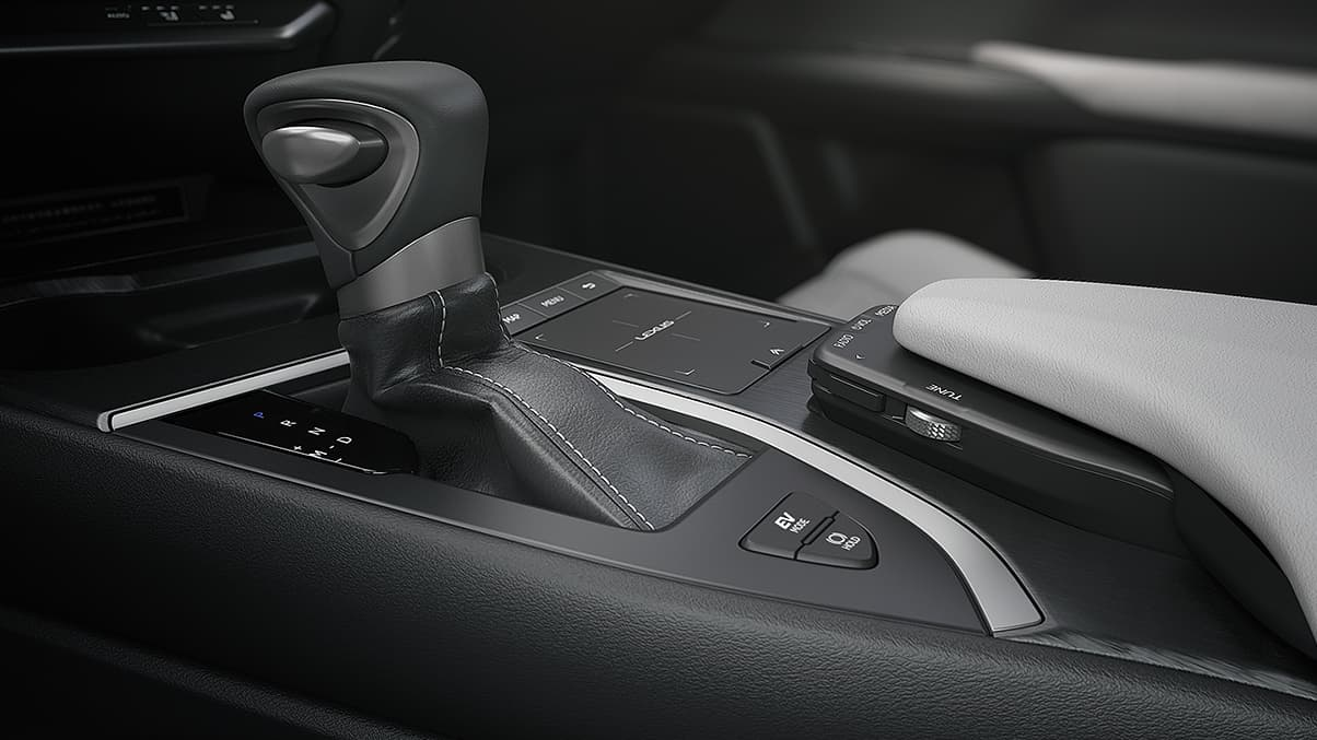 Luxurious Details in the 2020 UX 250h