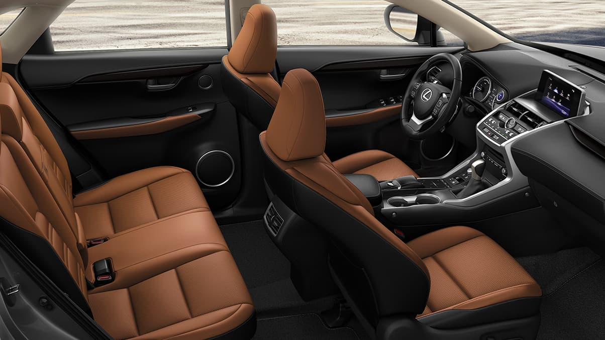 Refined Interior of the 2020 NX 300h