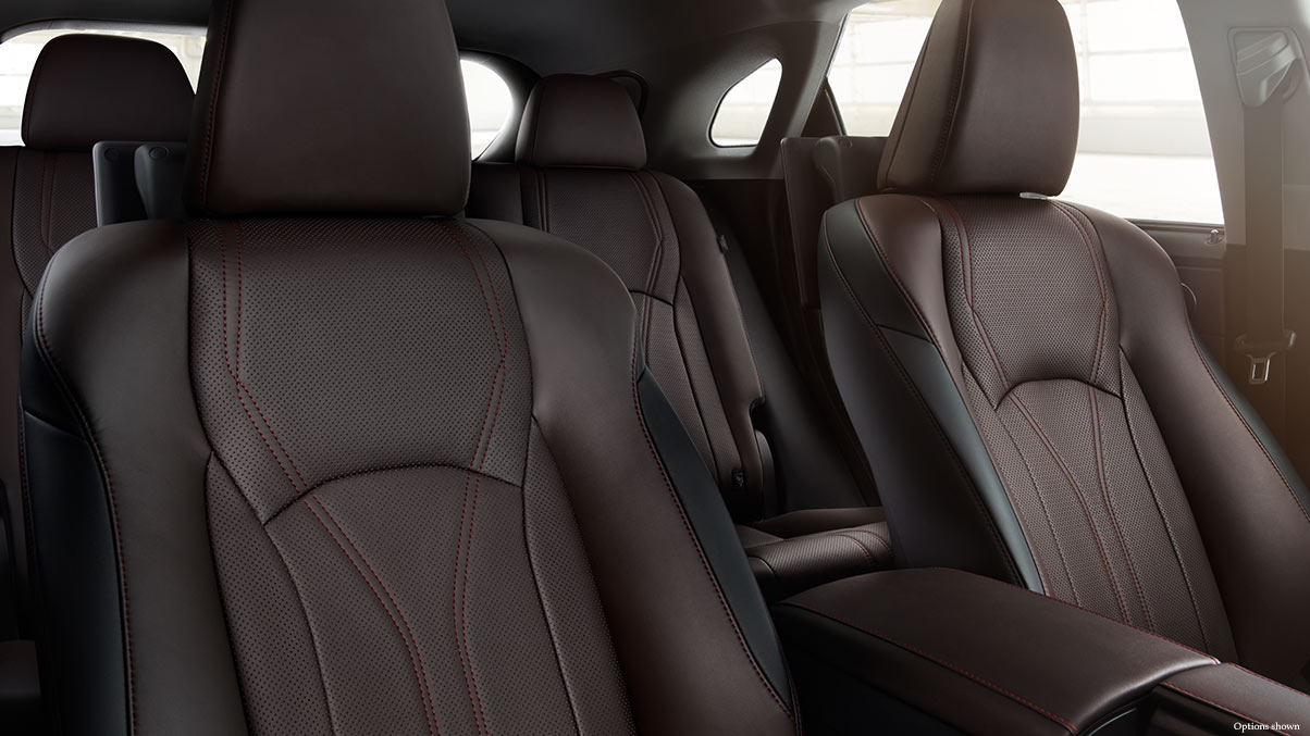 The Comfy Interior of the 2017 RX 350 is Cozy!