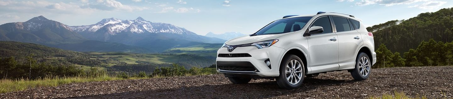 2017 Toyota RAV4 for Sale near Dekalb, IL