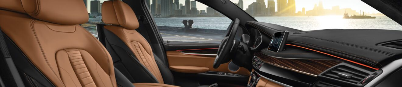 The BMW X6 xDrive50i Interior in Dark Olive Metallic