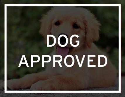 Mazda of Everett Dog Approved