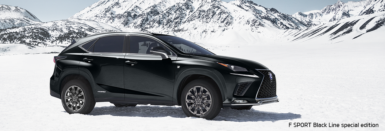 Lexus of Highland Park NXh in Snow