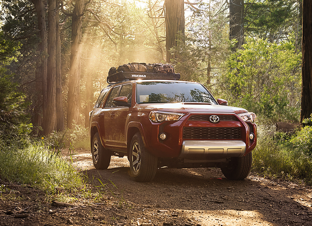 Team Toyota of Glen Mills is a Toyota Dealership near Kennett Square PA   2020 Toyota 4Runner driving on wooded trail