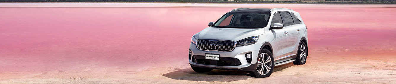 2019 Sorento Kia of Covington