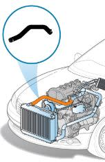 Toyota Radiator Hose Replacement