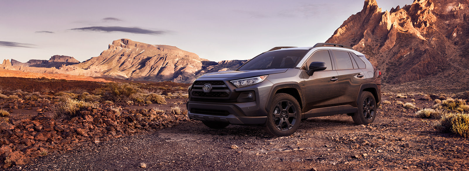 Compare the 2020 Toyota RAV4 vs. the Honda CR-V crossovers at Tri County Toyota | grey 2020 rav4 parked in a mountain terrian