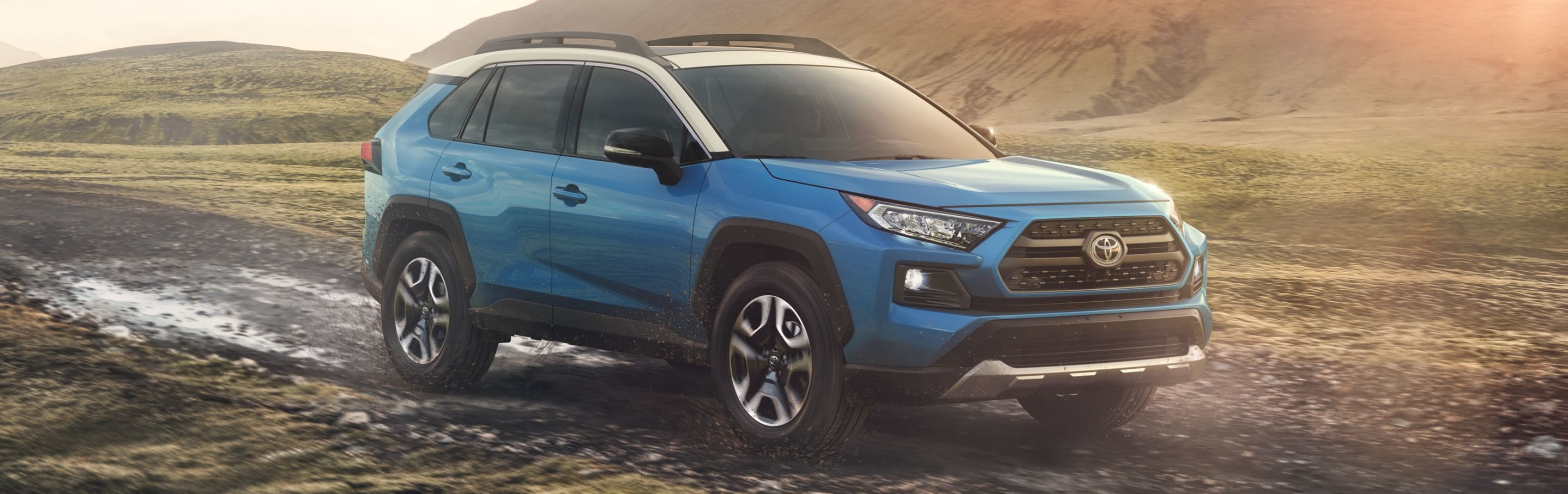 2019 Toyota RAV4 for Sale near White Plains, NY