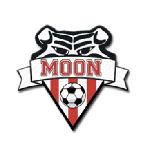 Moon Area Soccer Association | Brewer Partner