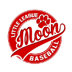 Moon Little League Baseball | Brewer Partner